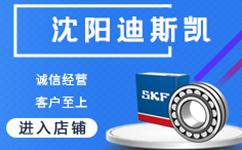 沈阳迪斯凯传动设备有限公司