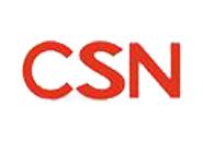 CSN轴承